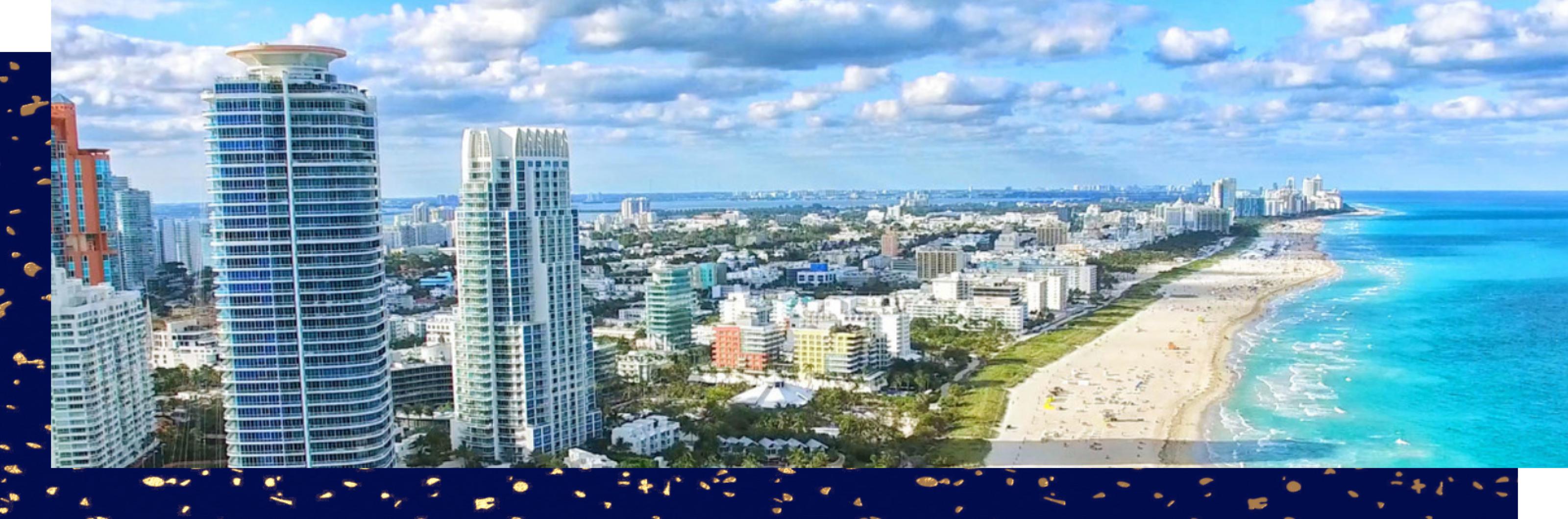 Portfolio Night: Miami